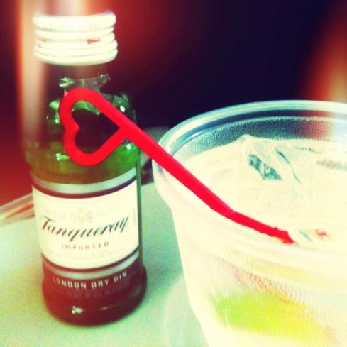 In Flight Gin & Tonic