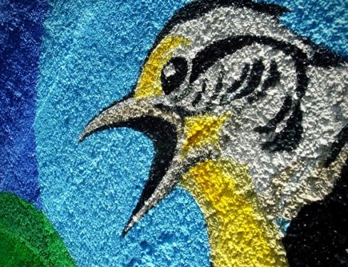 Alameda Ridge Bird