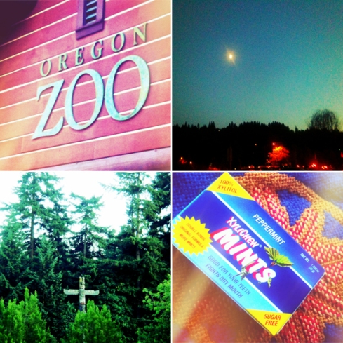 Oregon Zoo Collage