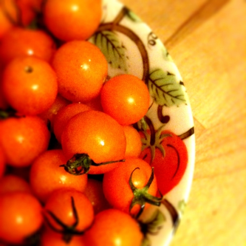 design_by_jen_tomato_bowl