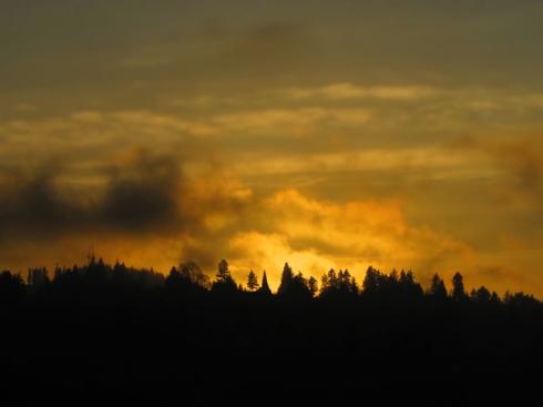 Fox Tower, sunset
