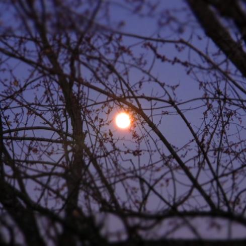 La Luna!