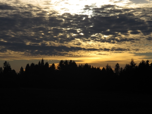 Christmas Eve Sunset, Boring, Oregon