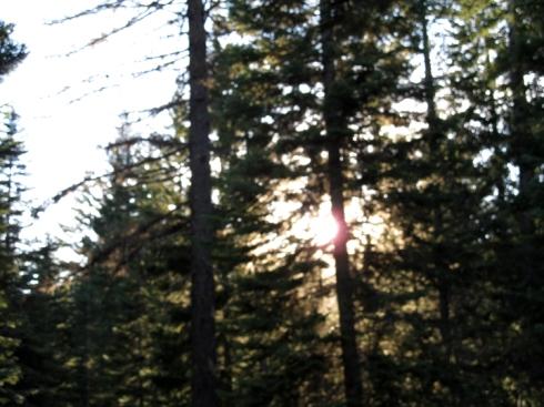 Sinking Sun Mt. Hood