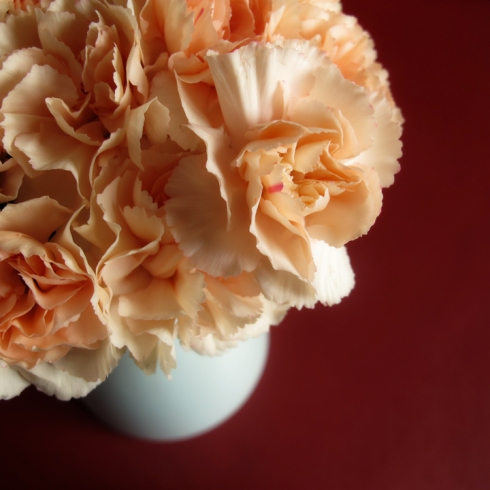 design_by_jen_orange_carnations