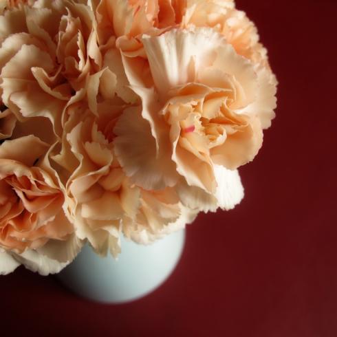 design_by_jen_orange_carnations