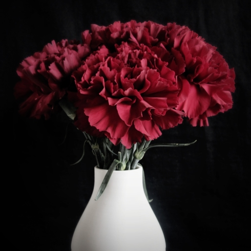 design_by_jen_red_carnations
