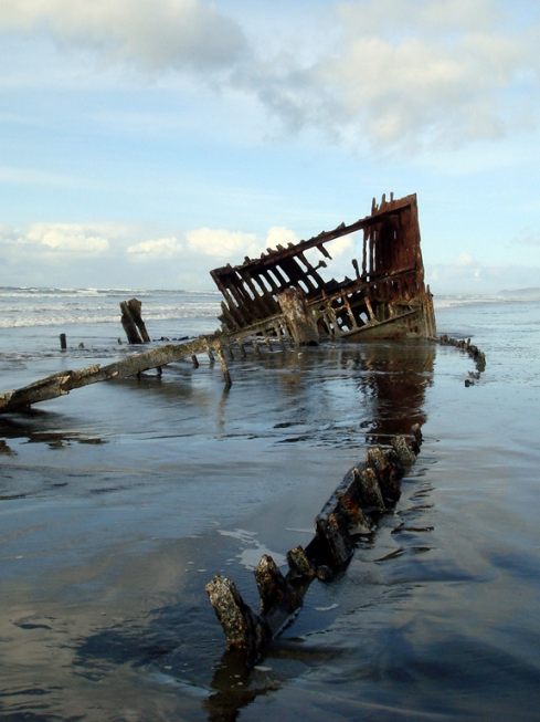design_by_jen_astoria_peter_iredale