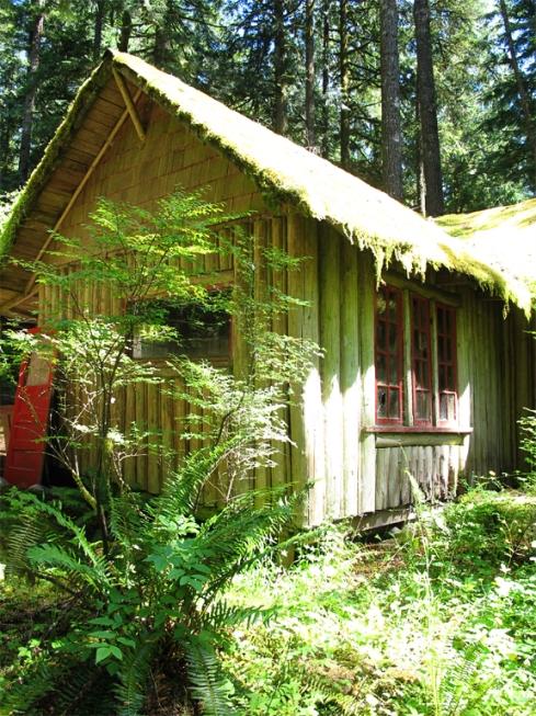 design_by_jen_deserted_cabin