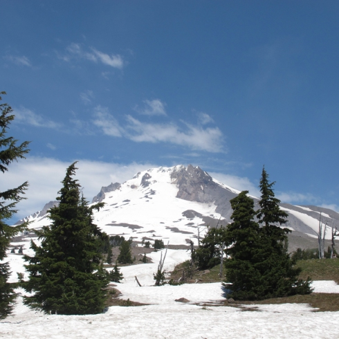 design_by_jen_mt_hood_at_timberline