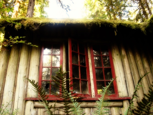 design_by_jen_house_window