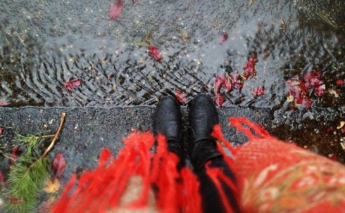 From Where I Stand - wet, rainy, Portland day