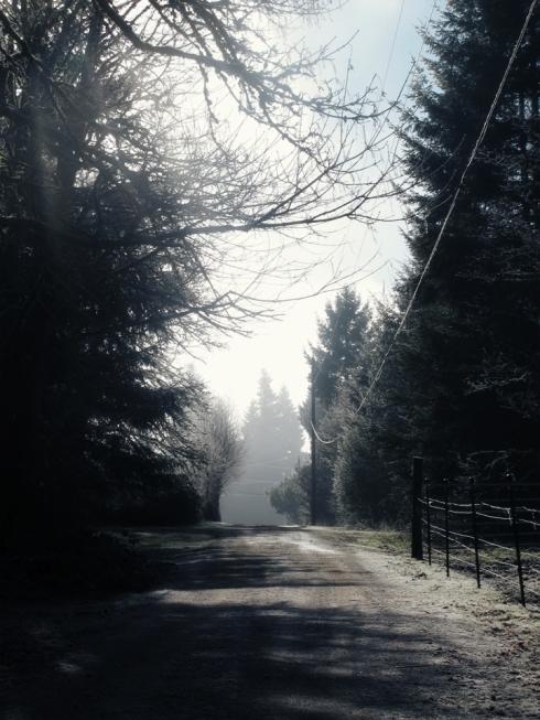 Childhood Driveway